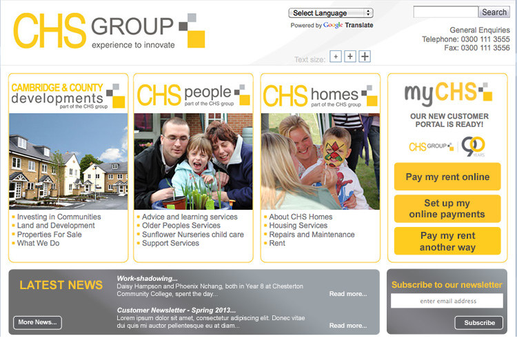 CHS Group website concept